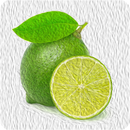 Lemon 10ml -Basic-