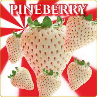 Pineberry 10ml